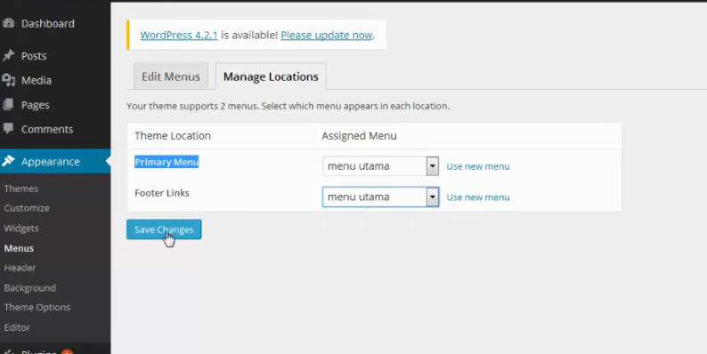 setting menu location wordpress